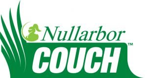 Nullarbor-Couch